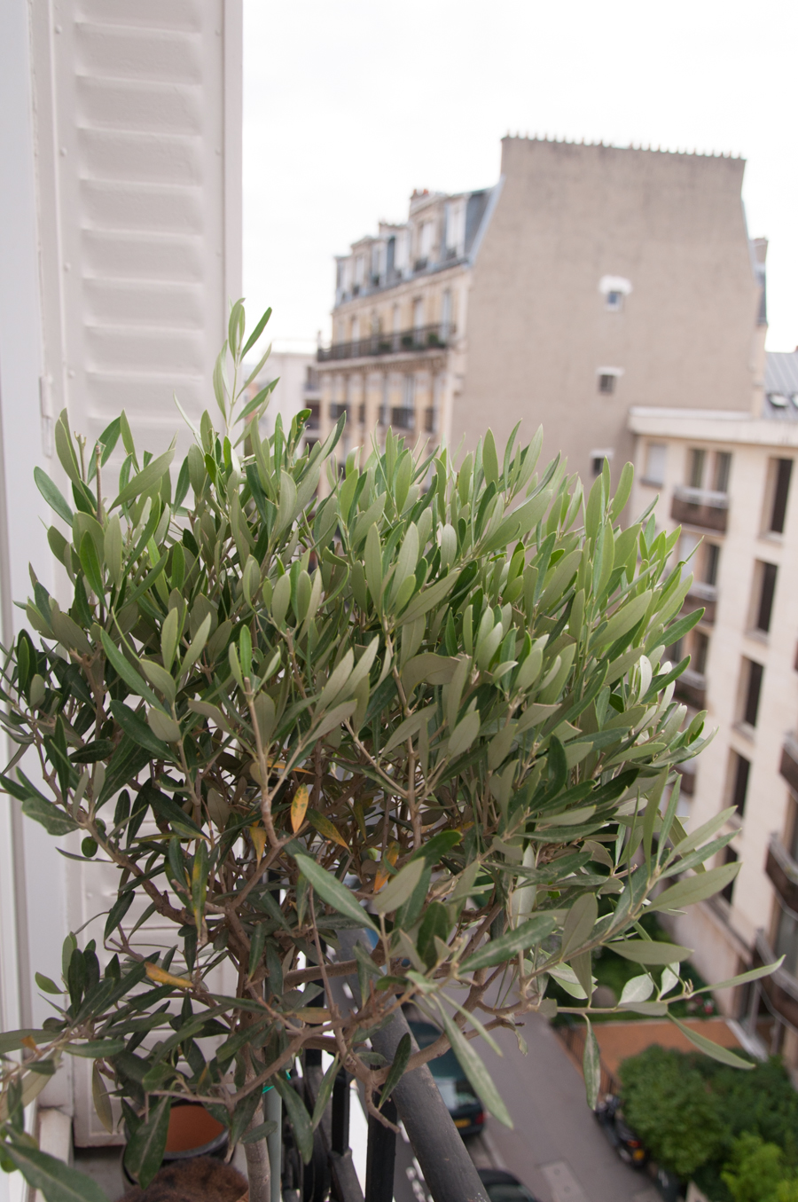2013_08_11_Montparnasse et Oliver_4