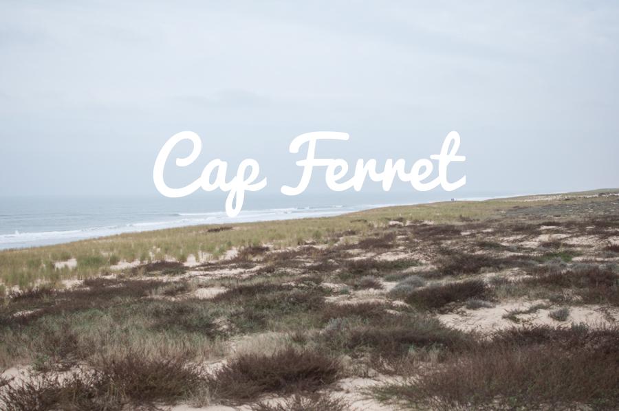 2013_11_18_WE-CapFerret_65