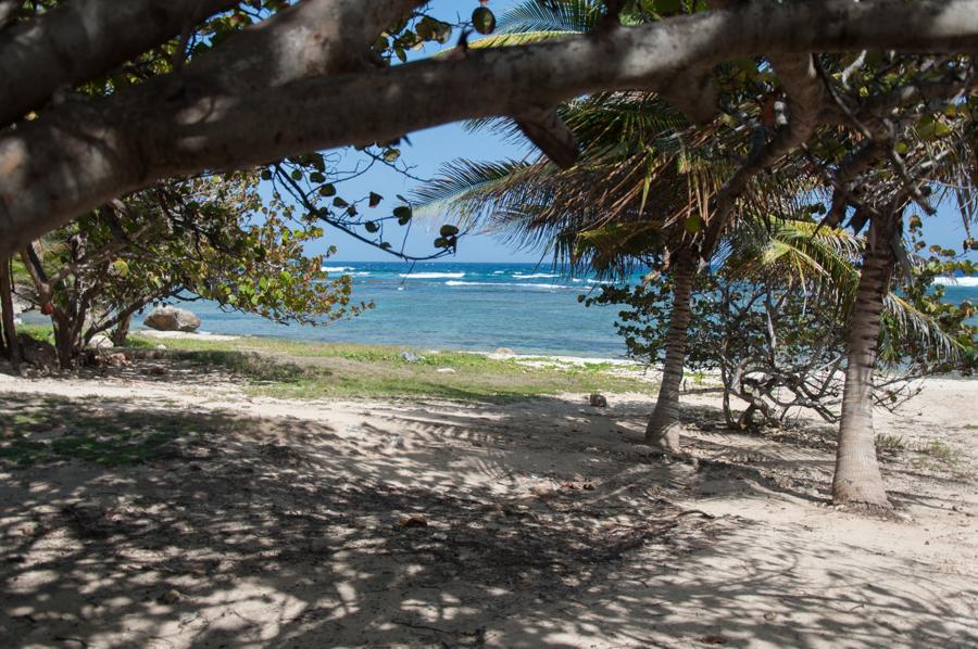 2014_01_Guadeloupe_26